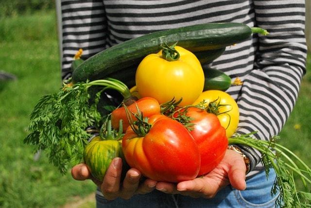 Vegetable Gardening Apps